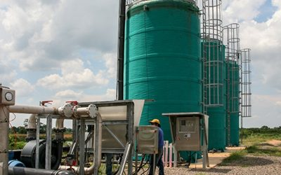 Hydrogen Sulphide and Biogas